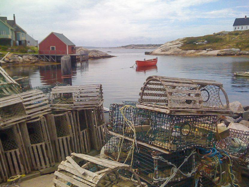 amas de cages : des pièges pour les animaux aquatiques