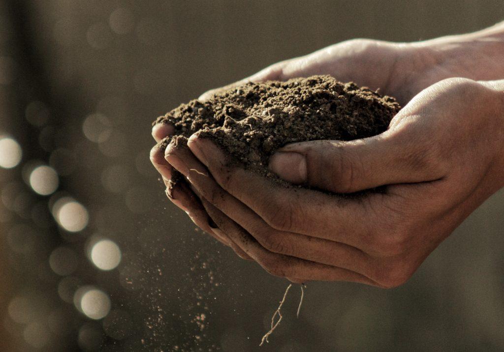 Mains qui tiennent de la terre pour montrer l'importance de l'humain en permaculture