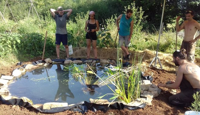 Groupe participatif à la construction d'un bassin lors d'une formation au jardin d'émerveille