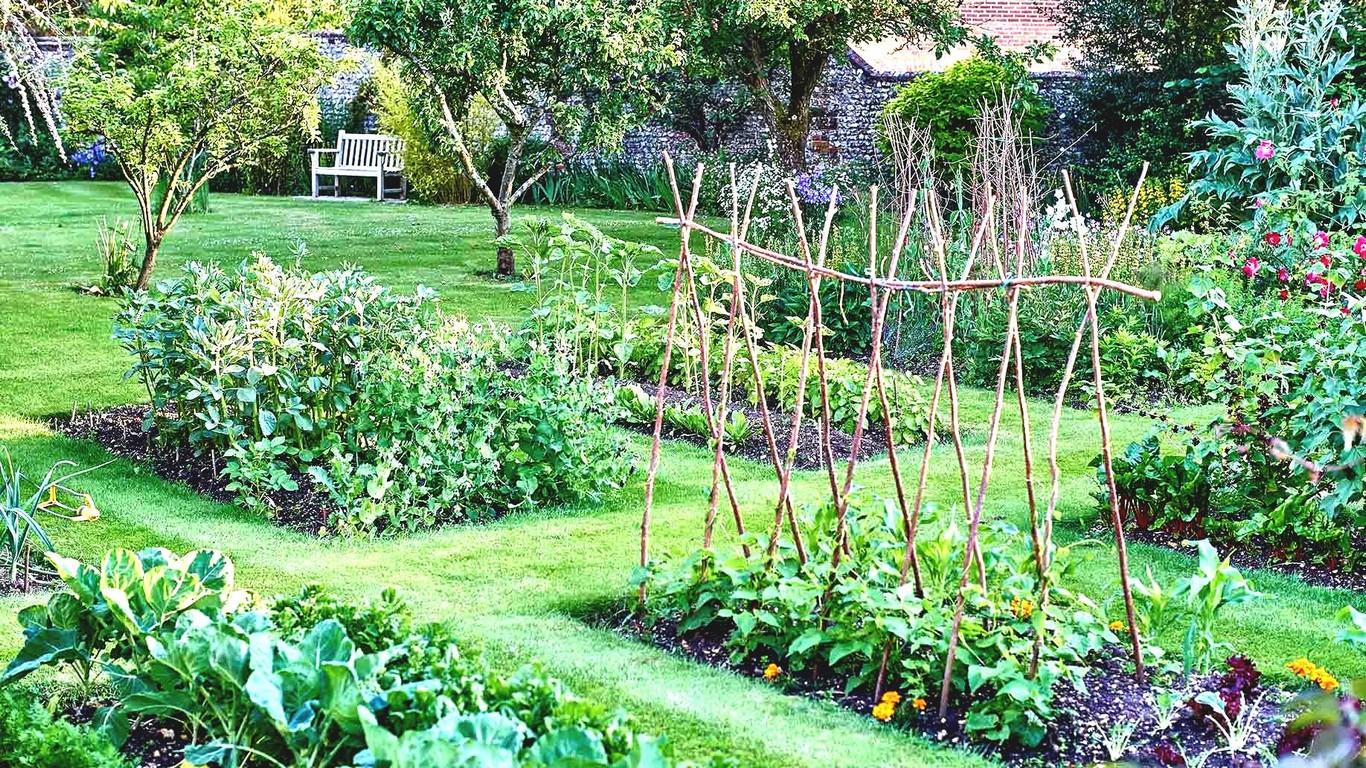 Exemple de potager en permaculture