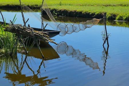 photo d'un piège à poisson sphérique disposé au dessus d'un étang