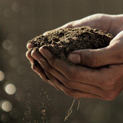 Montrer l'importance de la permaculture